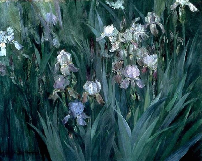 Iris at Dawn, 1899