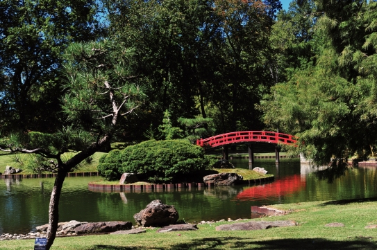 The Memphis Botanic Garden offers a haven of both natural serenity and fun for the family with its My Big Backyard children's area, farmers market, plant sales, paths and Japanese garden.